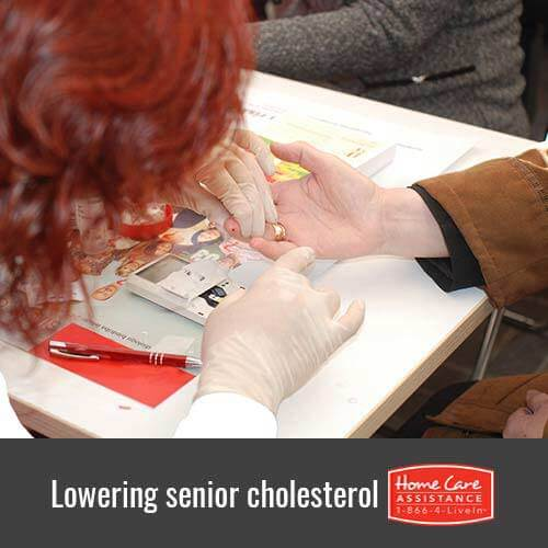 Tips for Lowering Senior Cholesterol in Oakville, CAN