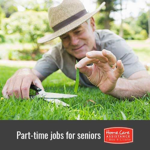 Good Part-Time Jobs for Seniors in Oakville, ON