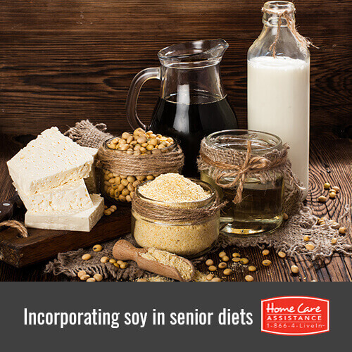 Adding Soy to a Senior's Diet in Oakville, ON