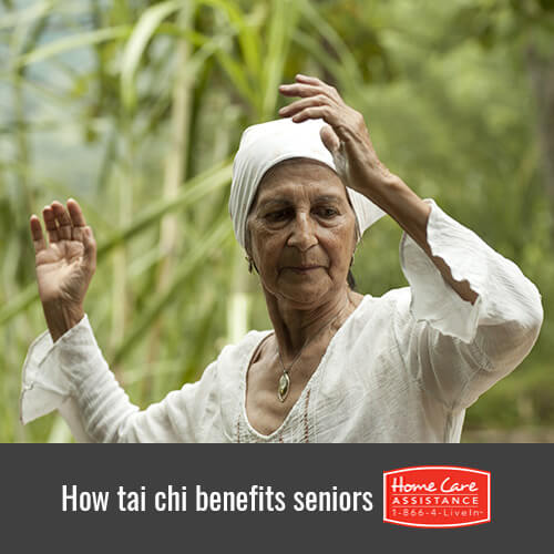 Understanding the Benefits of Tai Chi for Seniors in Oakville, ON