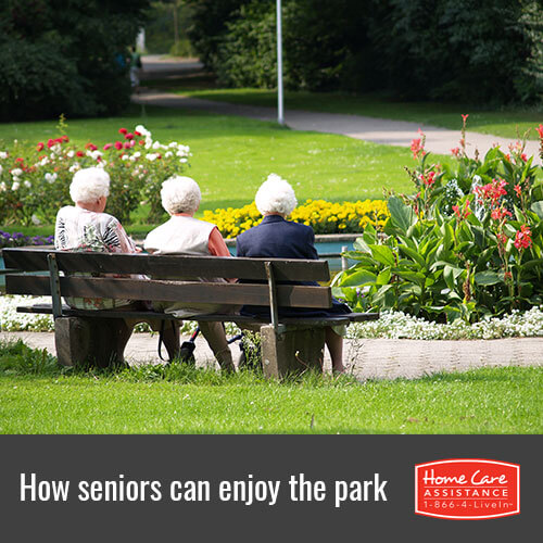 Helpful Ways for Seniors to Enjoy a Day in the Park in Oakville, ON