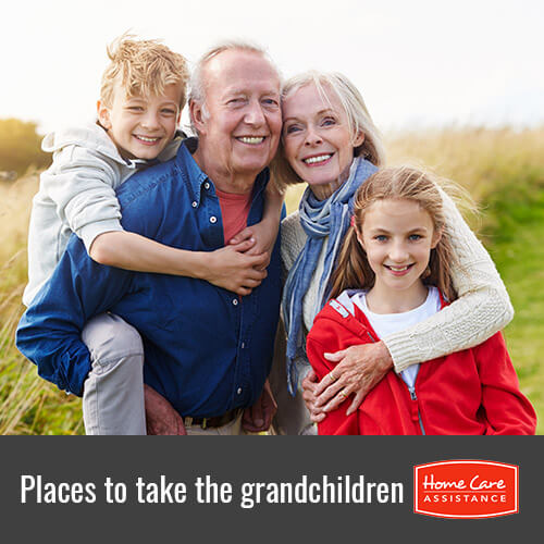 Great Places Where the Elderly Can Take Their Grandchildren in Oakville, ON, Canada