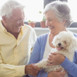 How Owning a Pet Helps Elderly People Heal