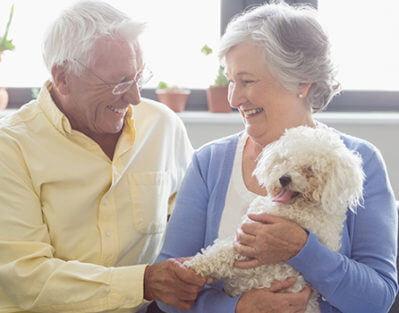Ways Owning a Pet Benefits Elderly People in Oakville, ON