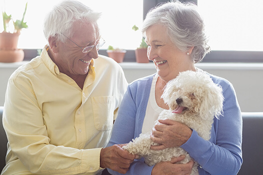 How Owning a Pet Helps Seniors Heal